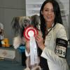 How to Become an AKC Champion - last post by Skyelove23
